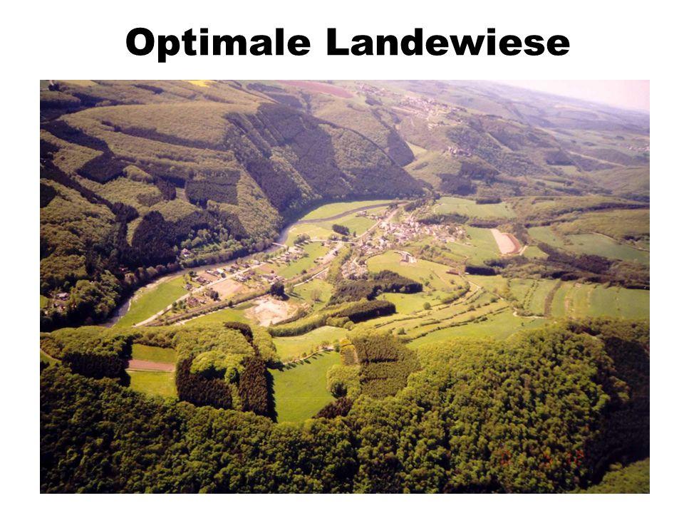 Optimale Landewiese