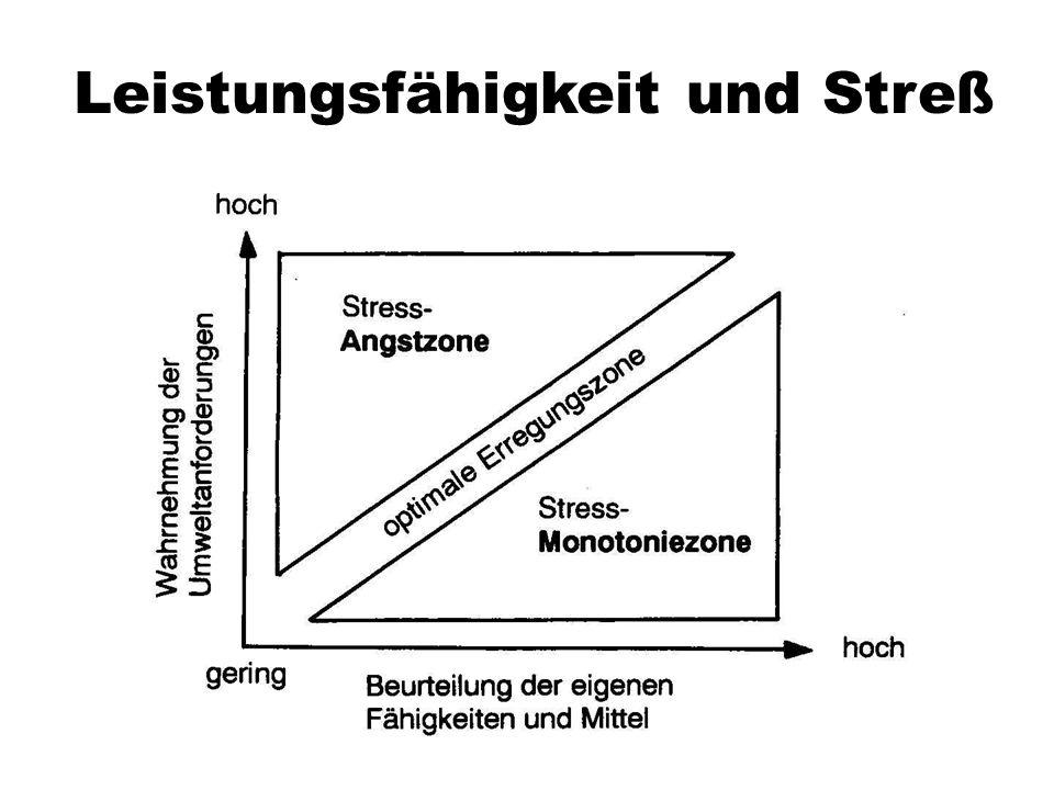Leistungsfähigkeit und Streß