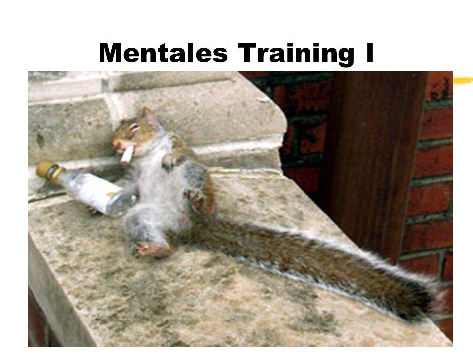 Mentales Training I Streckenfliegen spielt sich im Kopf ab