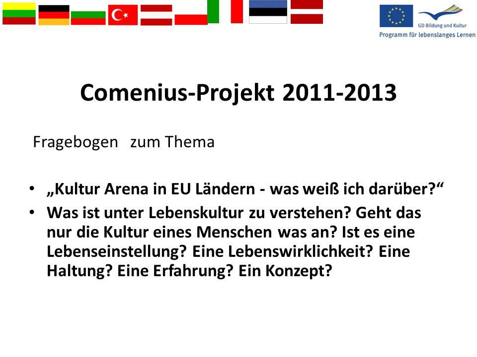 Comenius-Projekt 2011-2013 Fragebogen zum Thema