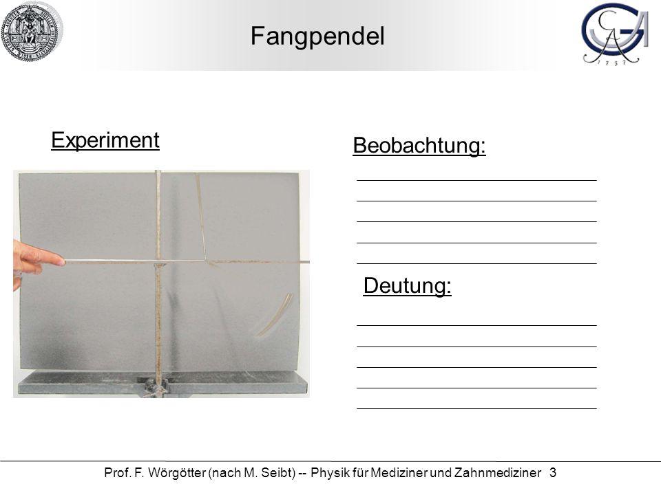 Fangpendel Experiment Beobachtung: Deutung: