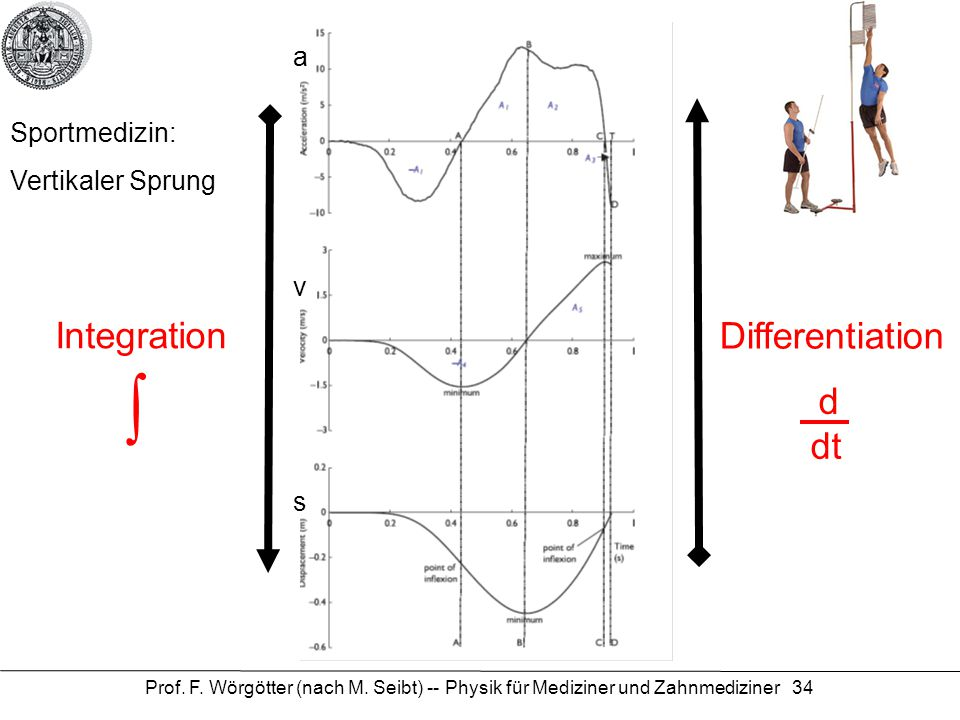 ∫ Integration Differentiation d dt a Sportmedizin: Vertikaler Sprung v