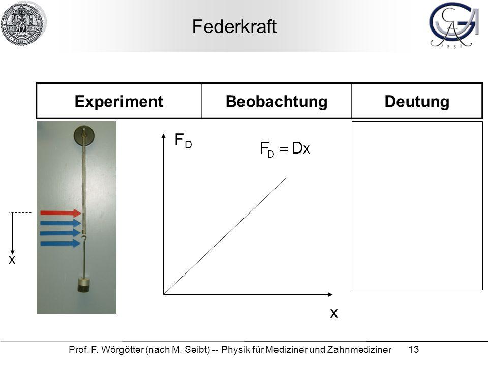 Federkraft Experiment Beobachtung Deutung FD x x