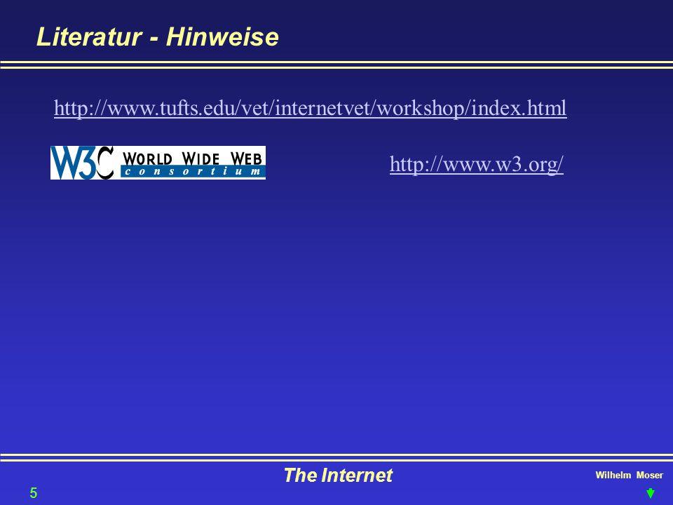 Literatur - Hinweise http://www.tufts.edu/vet/internetvet/workshop/index.html. http://www.w3.org/ The Internet.