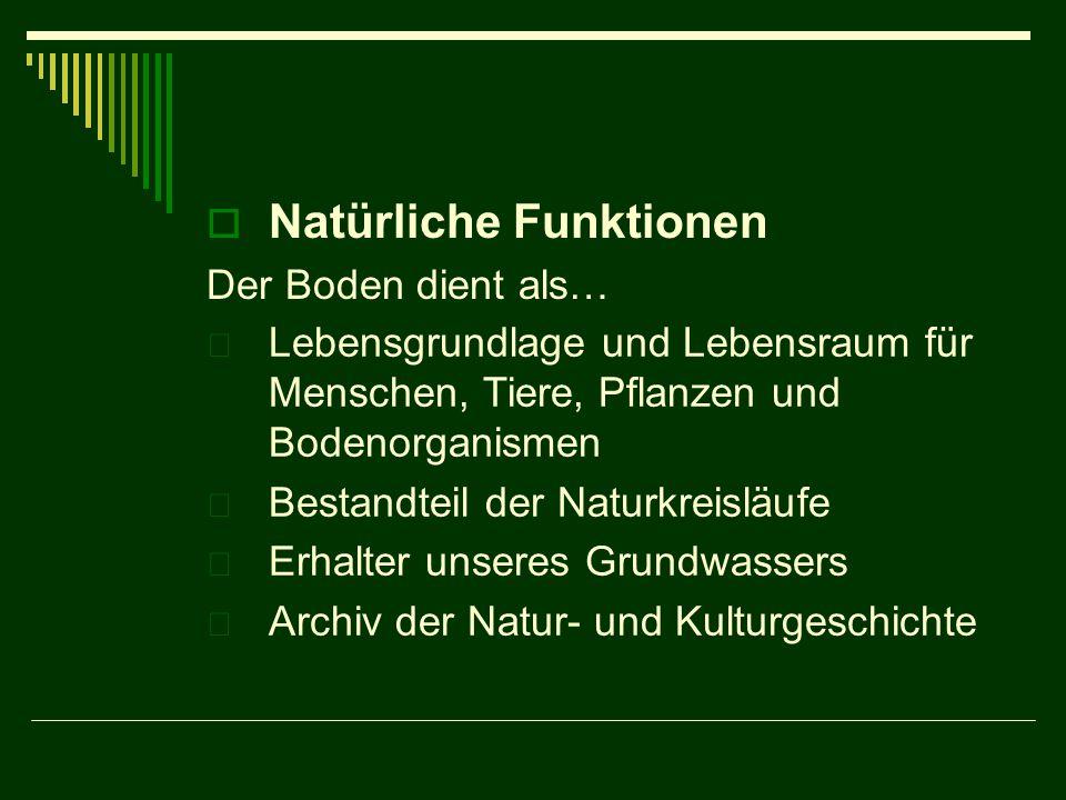 Natürliche Funktionen