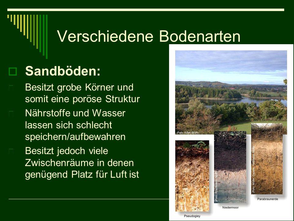 Verschiedene Bodenarten