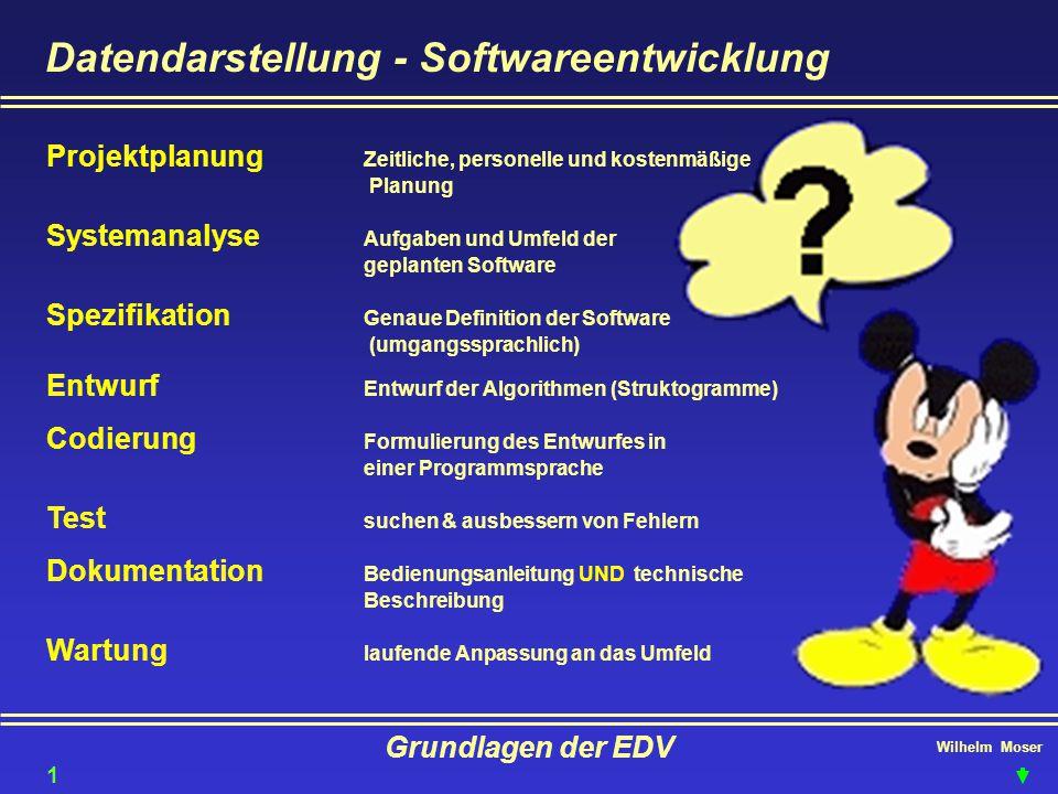 Datendarstellung - Softwareentwicklung