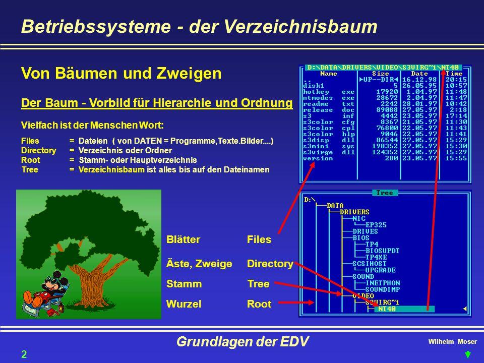 Betriebssysteme - der Verzeichnisbaum