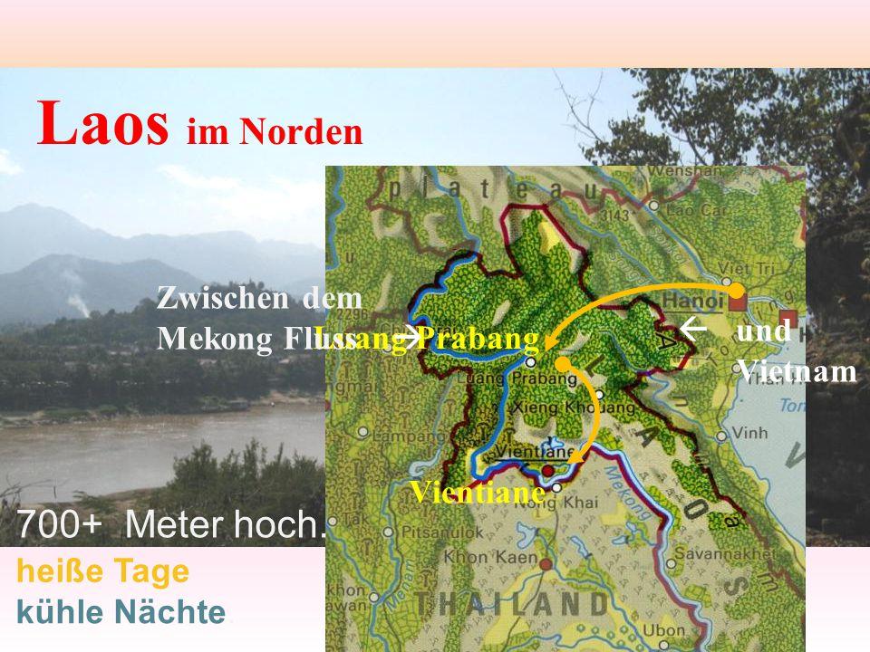 Laos im Norden 700+ Meter hoch. Zwischen dem Mekong Fluss   und