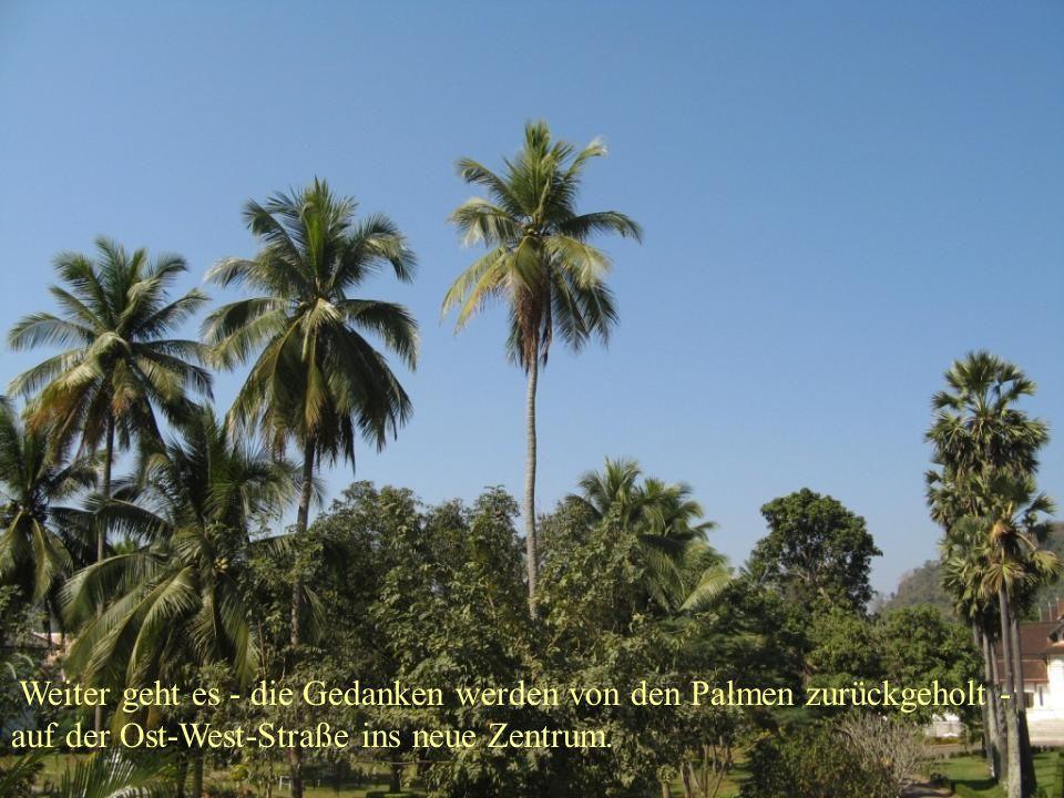 Weiter geht es - die Gedanken werden von den Palmen zurückgeholt - auf der Ost-West-Straße ins neue Zentrum.