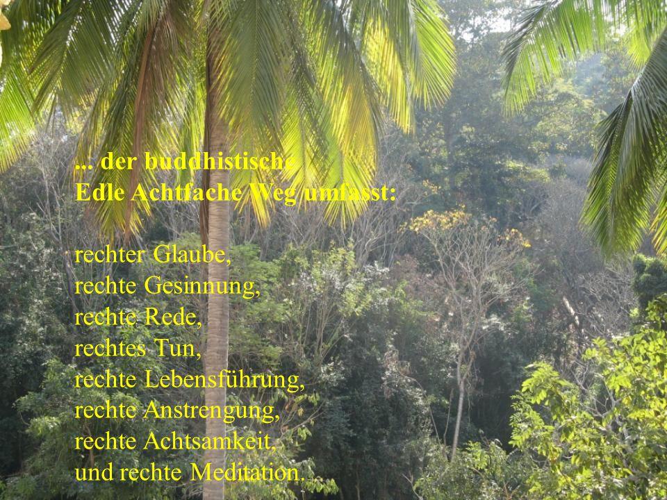 ... der buddhistische Edle Achtfache Weg umfasst:
