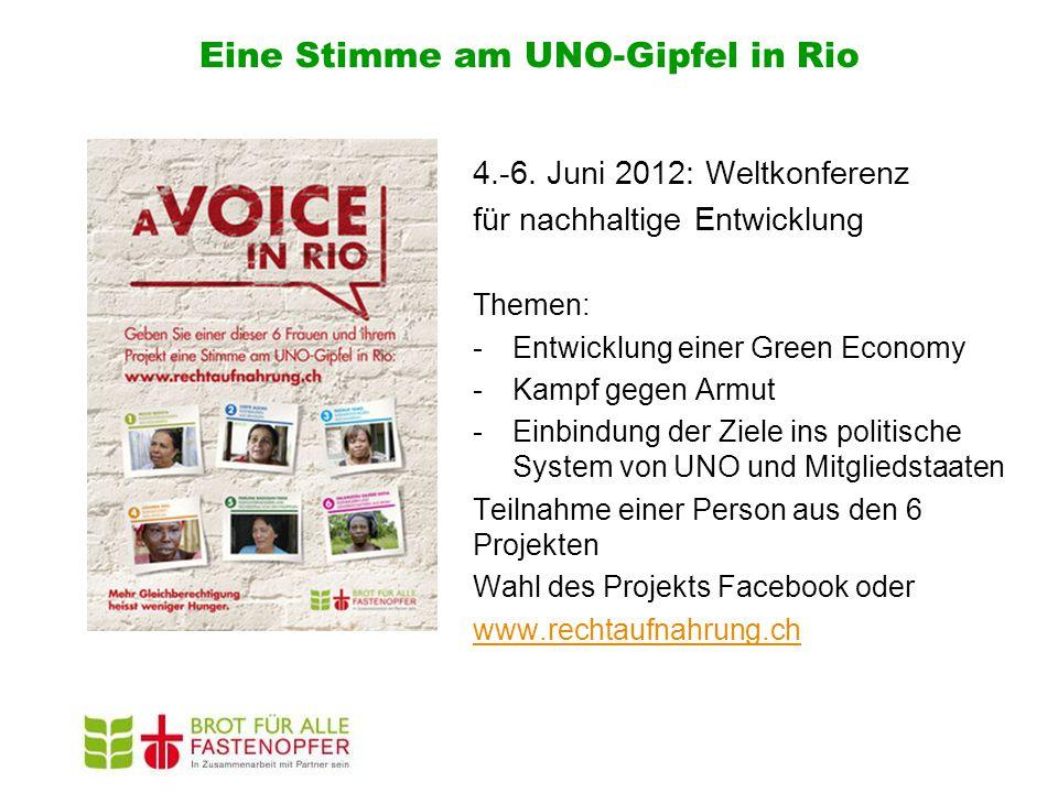 Eine Stimme am UNO-Gipfel in Rio