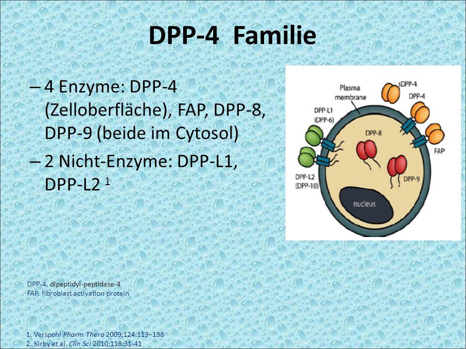 DPP-4 Familie 4 Enzyme: DPP-4 (Zelloberfläche), FAP, DPP-8, DPP-9 (beide im Cytosol) 2 Nicht-Enzyme: DPP-L1, DPP-L2 1.