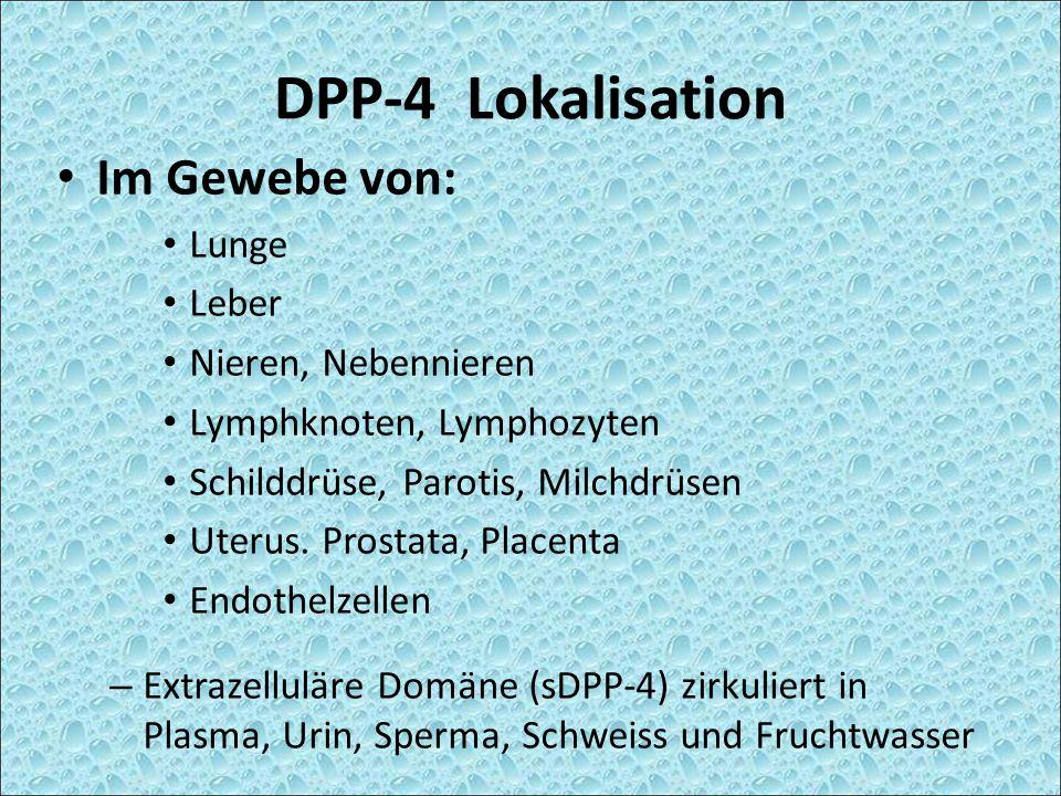 DPP-4 Lokalisation Im Gewebe von: Lunge Leber Nieren, Nebennieren
