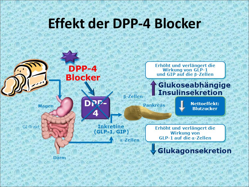Effekt der DPP-4 Blocker