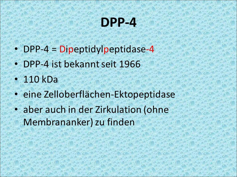 DPP-4 DPP-4 = Dipeptidylpeptidase-4 DPP-4 ist bekannt seit 1966