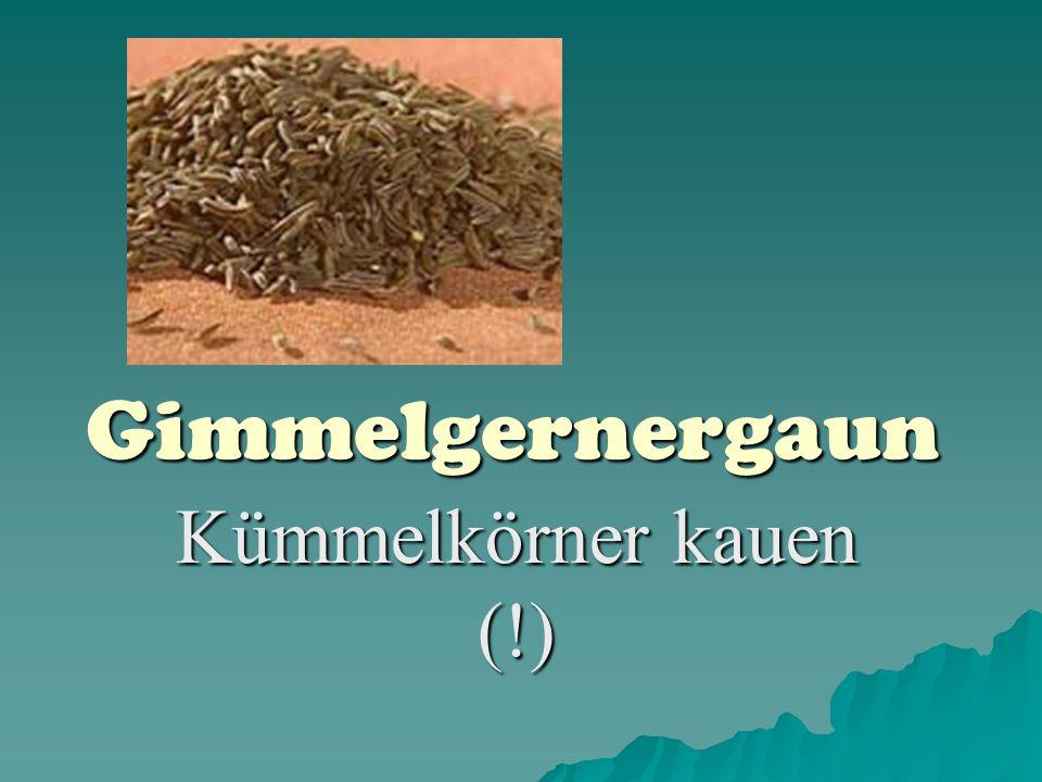 Gimmelgernergaun Kümmelkörner kauen (!)