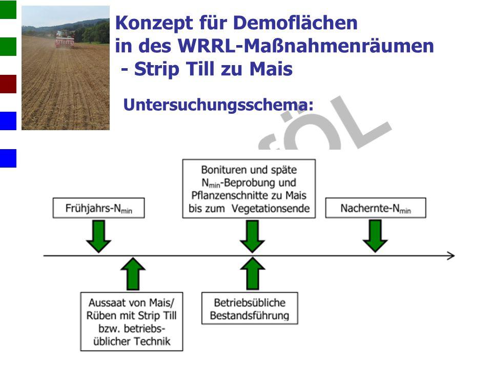 Konzept für Demoflächen in des WRRL-Maßnahmenräumen - Strip Till zu Mais