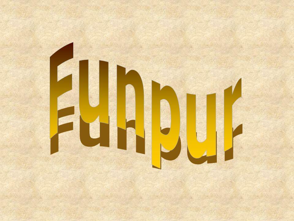 Funpur