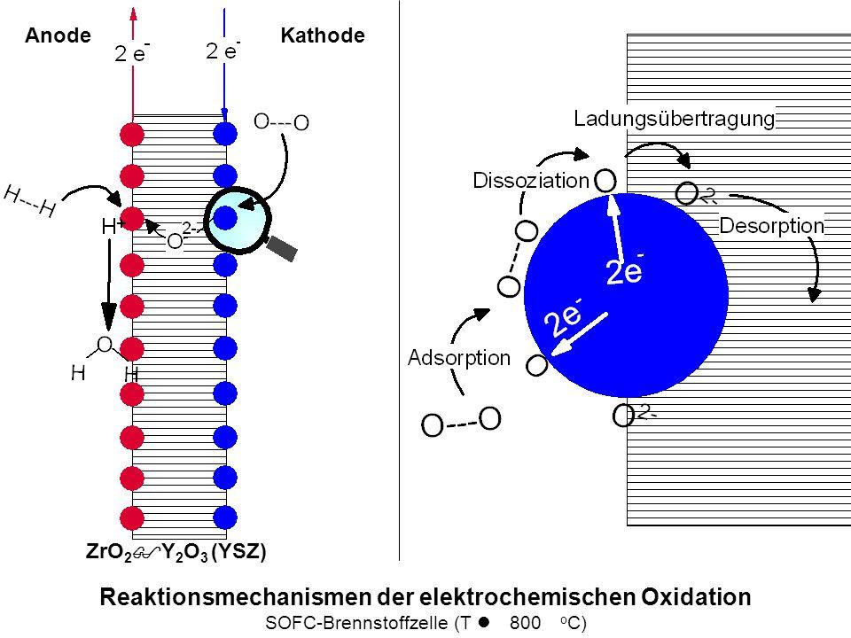 Reaktionsmechanismen der elektrochemischen Oxidation