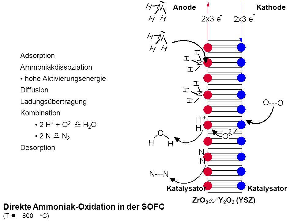 Direkte Ammoniak-Oxidation in der SOFC