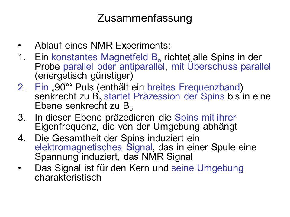 Zusammenfassung Ablauf eines NMR Experiments: