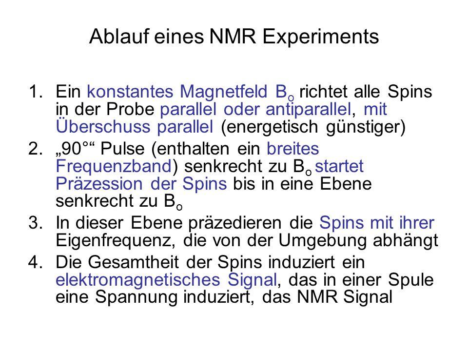 Ablauf eines NMR Experiments