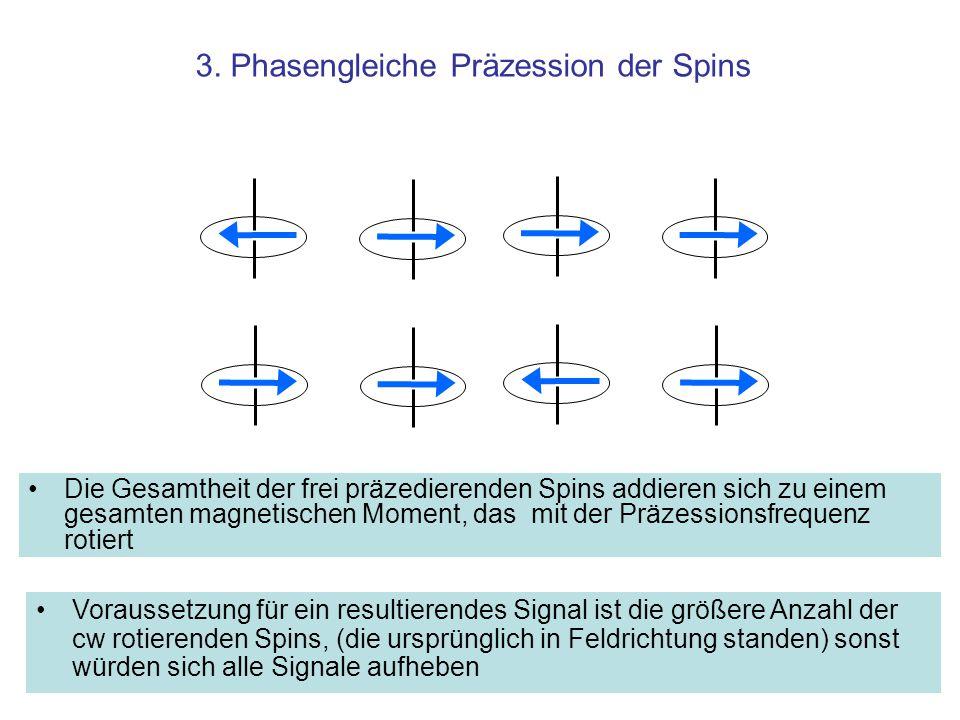 3. Phasengleiche Präzession der Spins