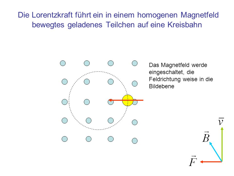 Die Lorentzkraft führt ein in einem homogenen Magnetfeld bewegtes geladenes Teilchen auf eine Kreisbahn