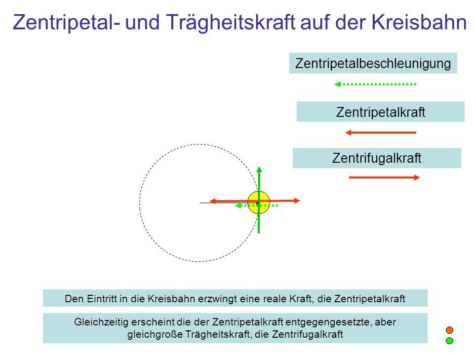 Zentripetal- und Trägheitskraft auf der Kreisbahn