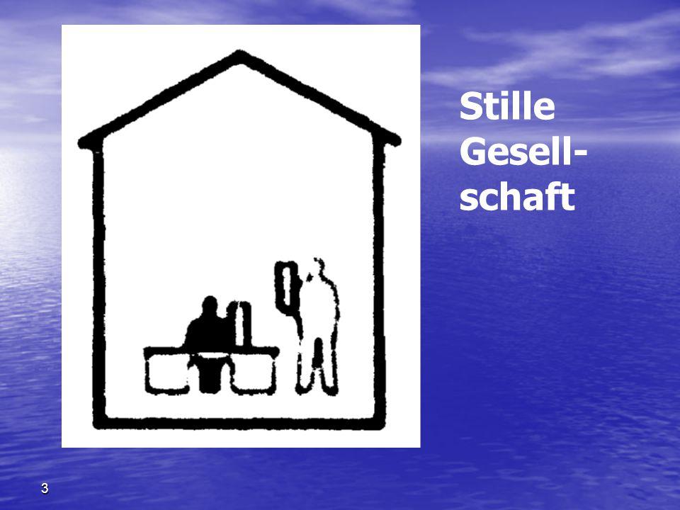Stille Gesell-schaft Stille Gesellschaft ( SG ) 隐形个体企业 3