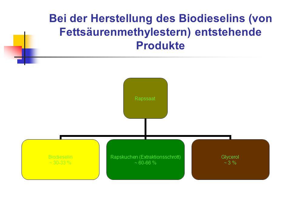 Bei der Herstellung des Biodieselins (von Fettsäurenmethylestern) entstehende Produkte