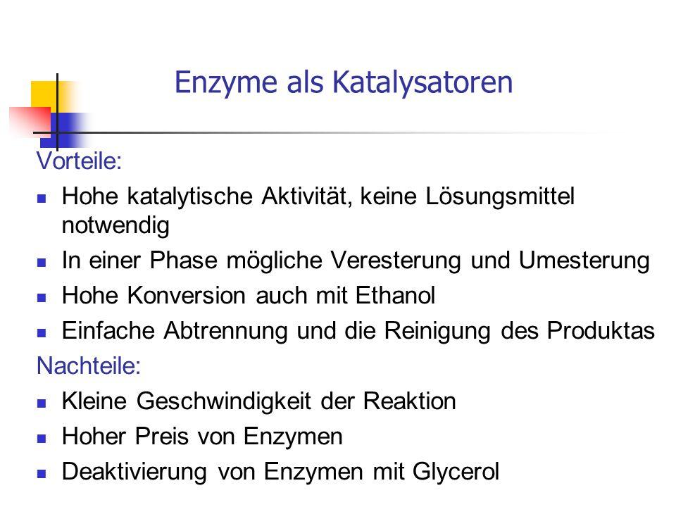 Enzyme als Katalysatoren