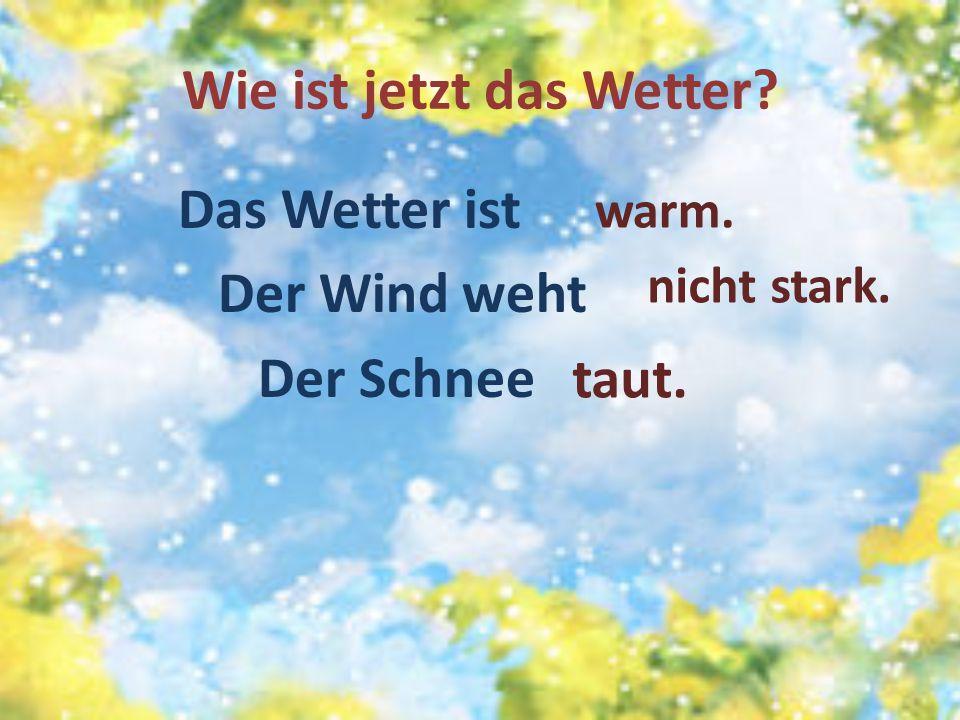 Wie ist jetzt das Wetter