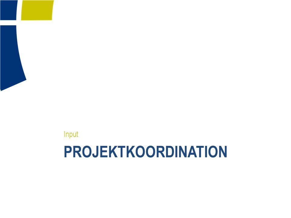 Input Projektkoordination