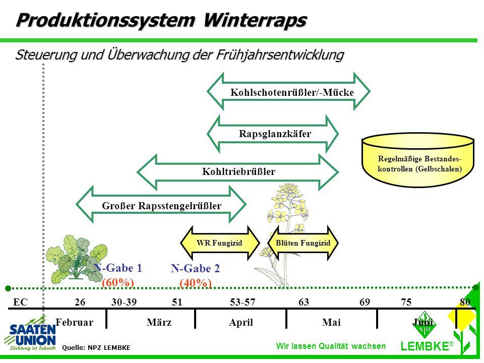 Produktionssystem Winterraps