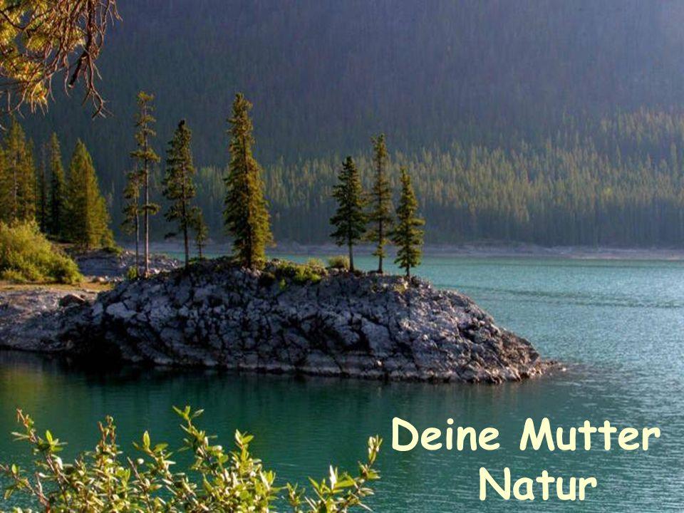 Deine Mutter Natur