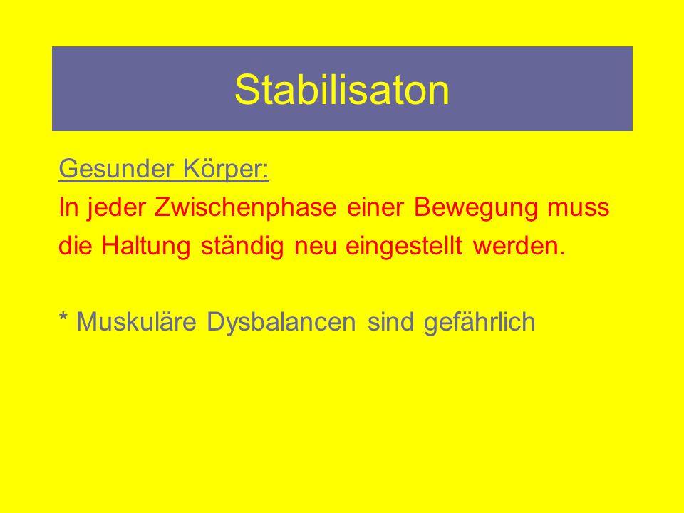 Stabilisaton Gesunder Körper: