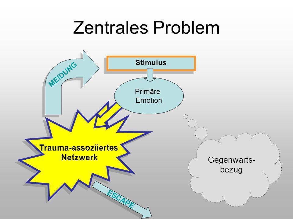 Zentrales Problem Trauma-assoziiertes Netzwerk Gegenwarts-bezug