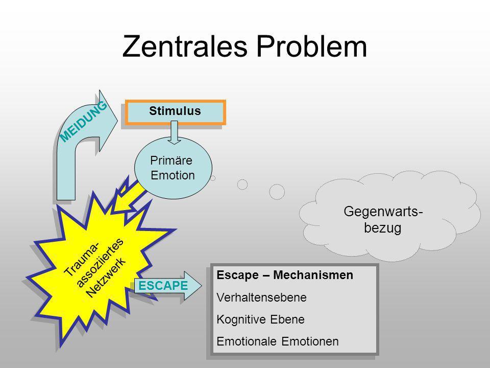 Zentrales Problem Gegenwarts-bezug Stimulus MEIDUNG Primäre Emotion