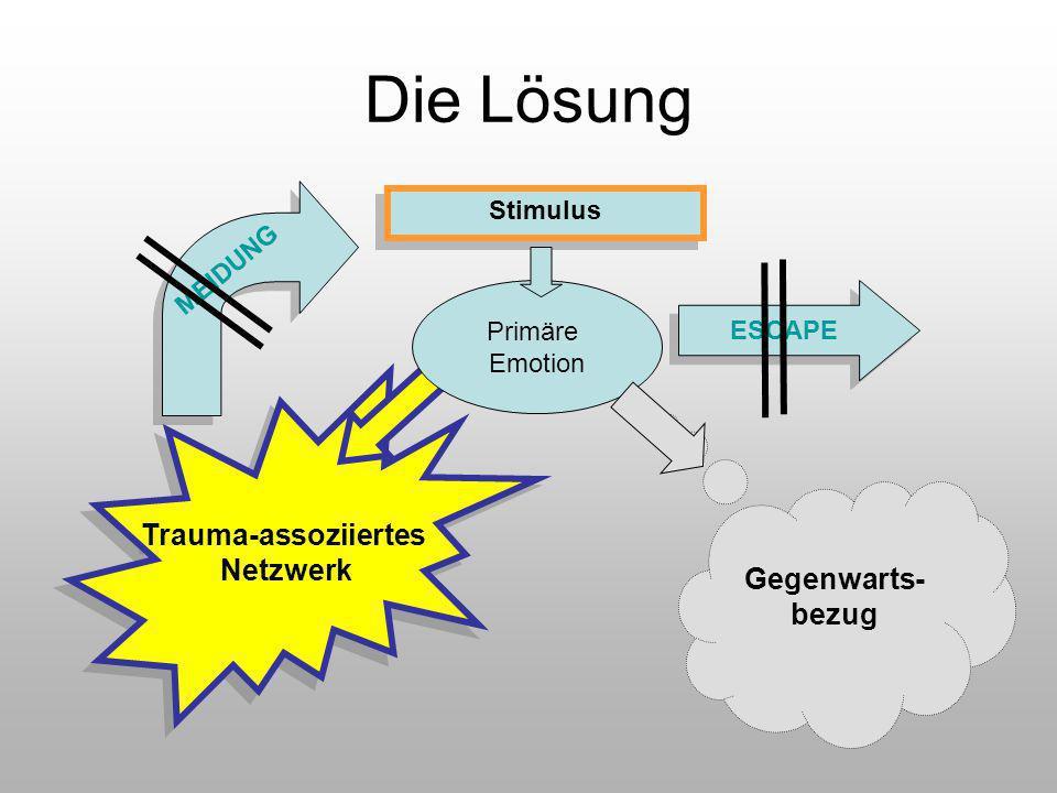 Die Lösung Trauma-assoziiertes Netzwerk Gegenwarts-bezug MEIDUNG