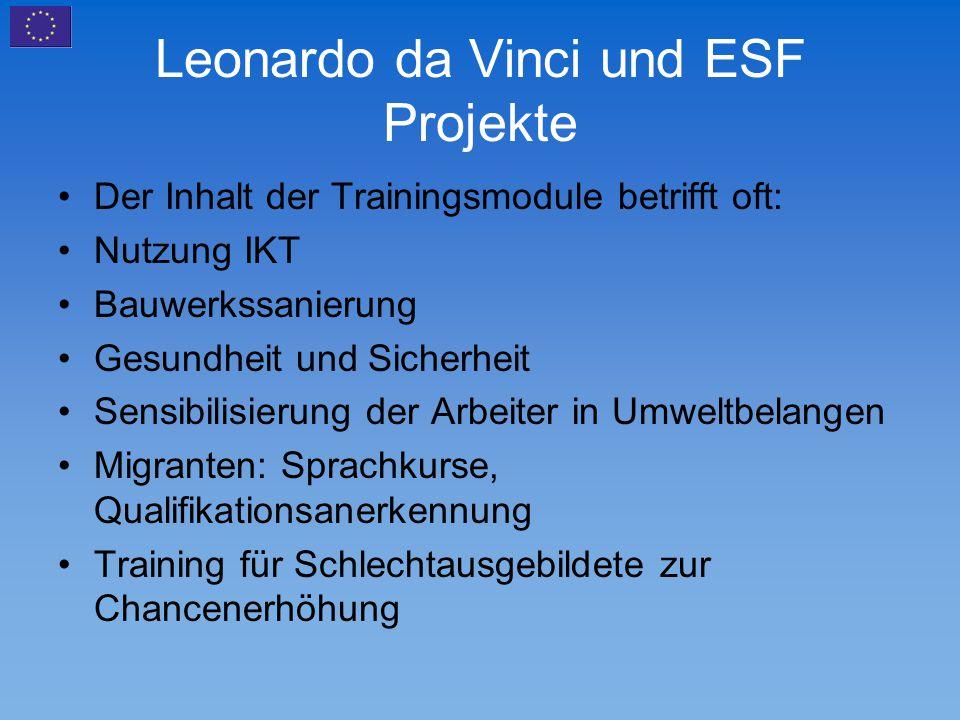 Leonardo da Vinci und ESF Projekte