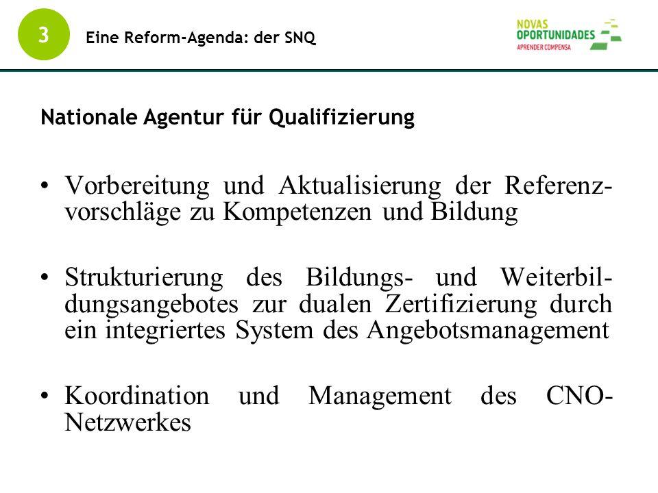 Koordination und Management des CNO-Netzwerkes