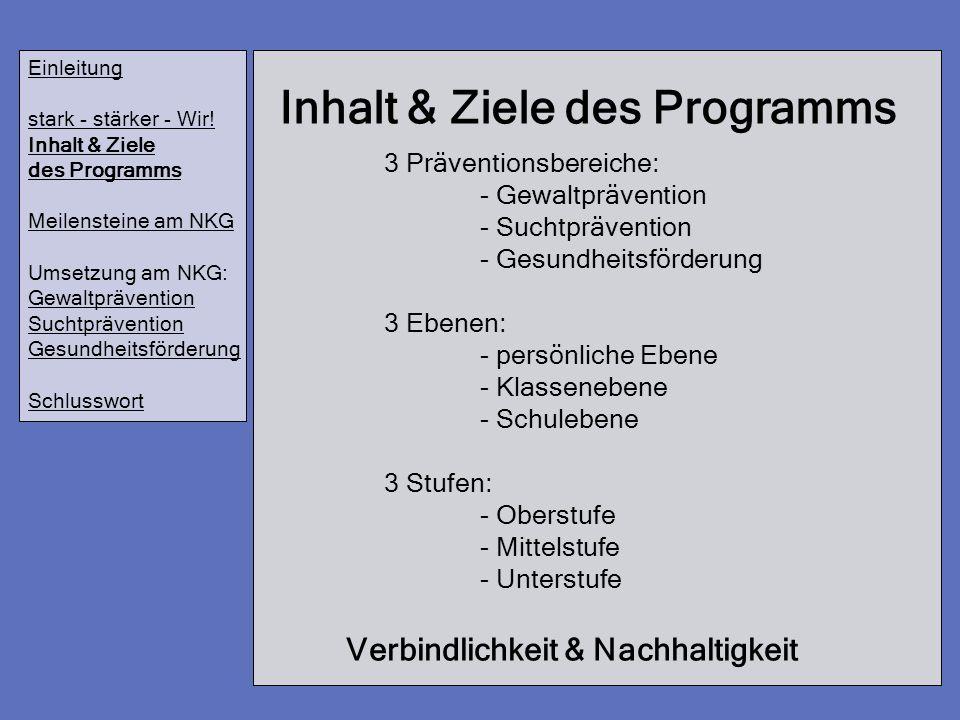 Inhalt & Ziele des Programms