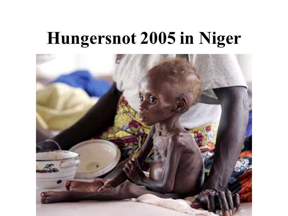 Hungersnot 2005 in Niger