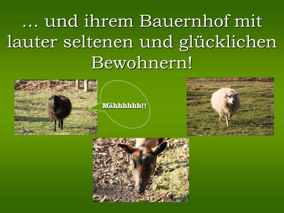 … und ihrem Bauernhof mit lauter seltenen und glücklichen Bewohnern!