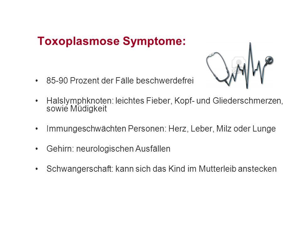 Toxoplasmose Symptome: