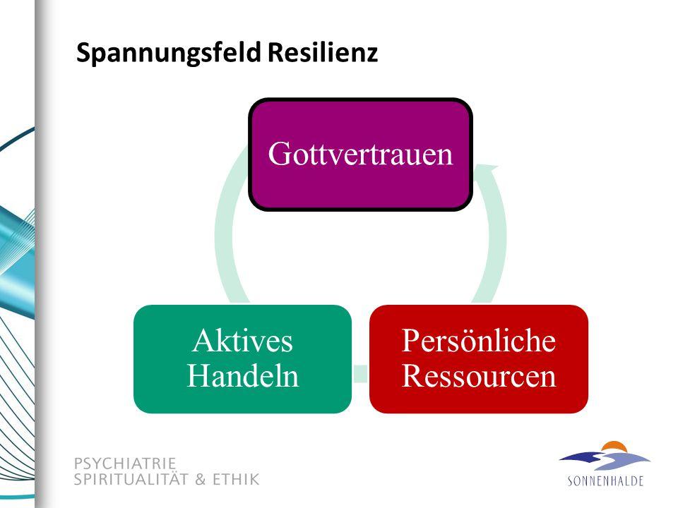 Spannungsfeld Resilienz