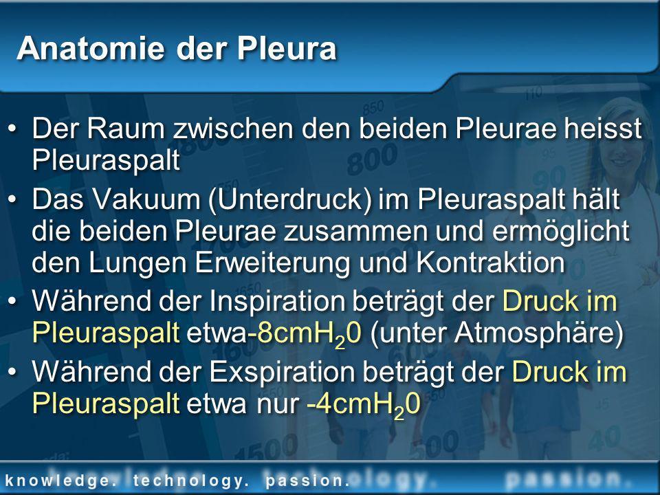 Anatomie der Pleura Der Raum zwischen den beiden Pleurae heisst Pleuraspalt.