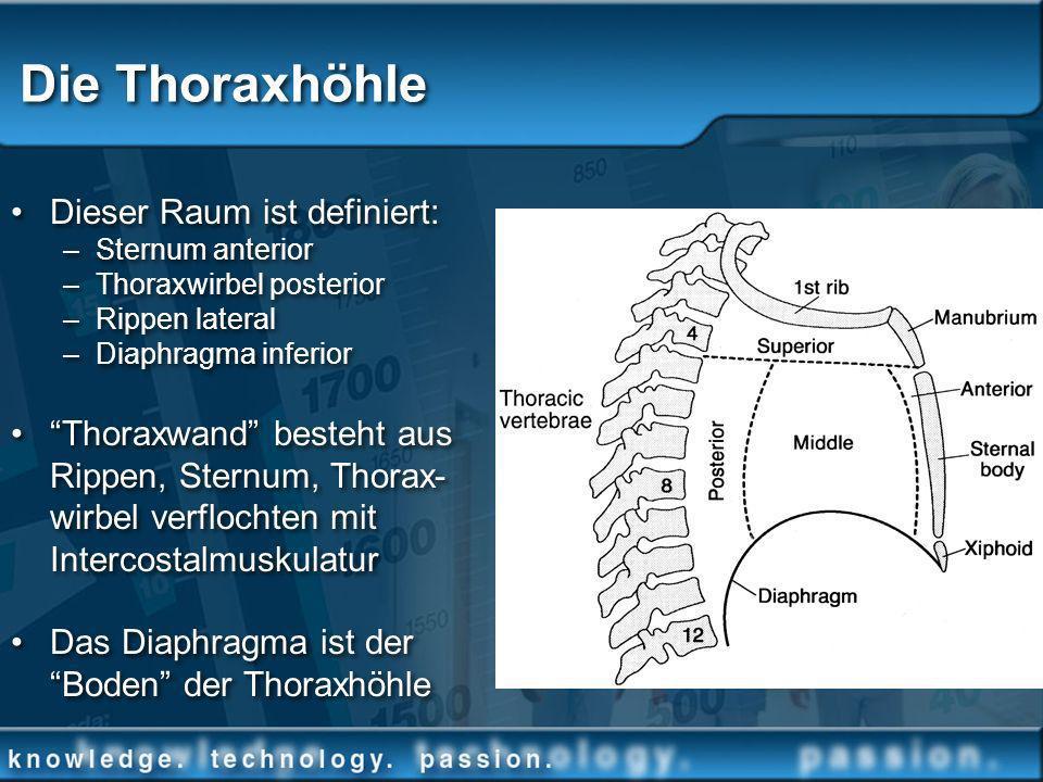 Die Thoraxhöhle Dieser Raum ist definiert: